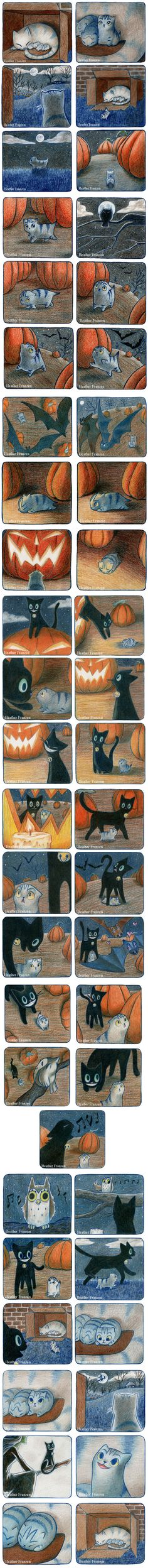 A Cat Story So cute!!