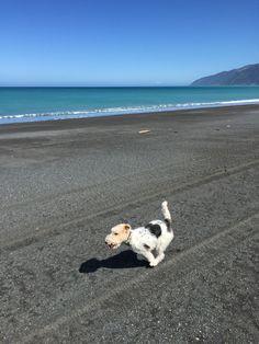 Full tilt - Ocean Beach