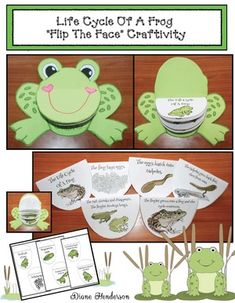 """Frog activities: Life Cycle Of A Frog craft: LOVE this """"flip the flap"""" frog face life cycle craft. Comes with realistic & cutesy graphic options. :-)"""