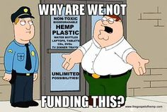 Yeah why arent we? Marijuana Facts, Cannabis, Tv Dinner Trays, Hemp Recipe, Stem Cell Research, Cheech And Chong, Up In Smoke, Biodegradable Products, Family Guy