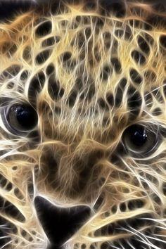 Fractal wild cat