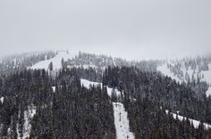 Whitefish Mountain Resort: A Skier's Paradise