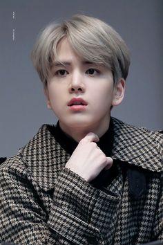 The boyz Younghoon Grey Hair Korean, Kpop Hair Color, Justin Gray, Jung Jaewon, Boy Idols, Cute Korean Boys, Boy Hairstyles, Korean Hairstyles, To My Future Husband