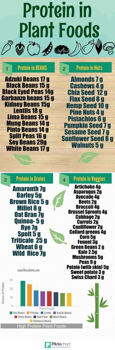 Protein in Plant Foods #vegan #infographic