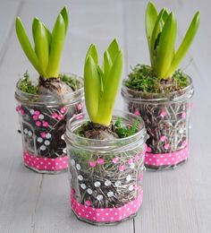 Meer dan 10 leuke cadeautips voor de juf of meester voor het einde van het schooljaar. Homemade, simpel en low budget. www.gezinsleven.com