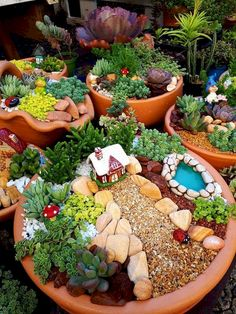 If you are looking for Diy Fairy Garden Design Ideas, You come to the right place. Below are the Diy Fairy Garden Design Ideas. This post about Diy Fairy. Indoor Fairy Gardens, Fairy Garden Plants, Mini Fairy Garden, Fairy Garden Houses, Gnome Garden, Miniature Fairy Gardens, Succulents Garden, Fairy Gardening, Vegetable Gardening