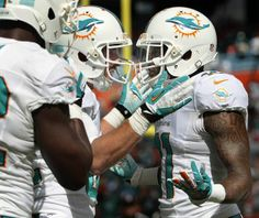 Miami Dolphins wide receiver Mike Wallace (11) is congratulated by wide receiver Brian Hartline after Wallace scored the first touchdown of the game between the Miami Dolphins and Carolina Panthers on Nov. 24, 2013.(Bill Ingram/Palm Beach Post)