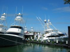 Viking Yachts at the Yacht and Brokerage Show in Miami Beach 2014