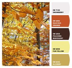 Fall in New Hampshire--warm and inviting! #chipit Paint colors from Chip It! by Sherwin-Williams. Repin via @Barbara C