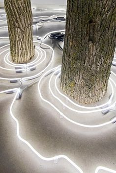 Keith Lemley - Something and Nothing - neon installation with wood trunks