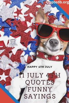July 4th Quotes Funny, July 4th Sayings, Fourth Of July Quotes, Funny 4th Of July, Badass Quotes, Cute Quotes, Great Quotes, Funny Quotes, Fireworks Quotes