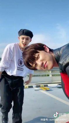 Seventeen Minghao, Seventeen Scoups, Seventeen Woozi, Seventeen Album, Seventeen Memes, Cool Dance Moves, Cat Aesthetic, Seventeen Wallpapers, Funny Kpop Memes