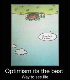 Google Image Result for http://watchusplaygames.files.wordpress.com/2012/04/turtle-falling-is-flying-optimism-the-best-way-to-see-life.jpg%3Fw%3D645