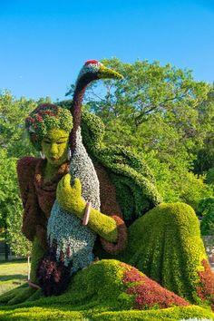 esculturas de plantas