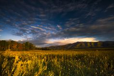 Cades Cove is such a magical place.