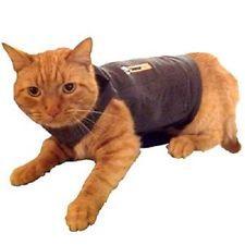 Thundershirt for Cats | eBay