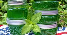 Menta lekvár: nem csak finom, de a szervezet számára is igen hasznos! Mint Recipes, Jelly Recipes, Jam Recipes, Chutneys, Diet To Reduce Cholesterol, Mint Jelly, Green Life, Saveur, Izu