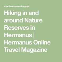 Hiking in and around Nature Reserves in Hermanus Travel Magazines, Online Travel, Nature Reserve, Hiking, Activities, Trekking