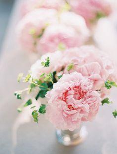 pioen rozen, love them