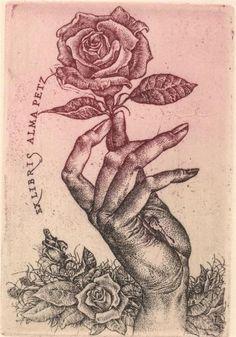 Starry Eyed Wolfchild - The Old Butcher's Bookshop, Paris Ex Libris, Hand Flowers, Hand Art, Pictures To Paint, Art Inspo, Printmaking, Art Reference, Design Art, Illustration Art