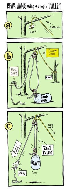 Bear Hang Using A Simple Pulley. These survival skills could totally save your ass one day. But they also make you look brilliant when you're camping and backpacking. For more survival nerdiness, check out missadventurepant…