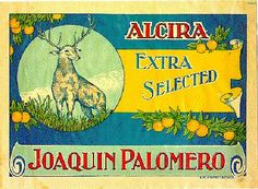 Naranjas Joaquín Palomero.  Alzira.