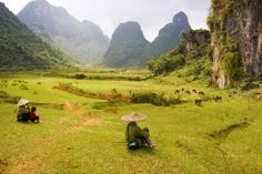 Buffalo watching, Ha GiangAdventures in Northern Vietnam Tour by bambootravel