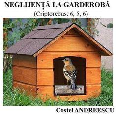 PĂTRĂŢICĂ-blog-Petrică-Aidimireanu: NEGLIJENŢĂ LA GARDEROBĂ - Enigmă de Costel ANDREES...