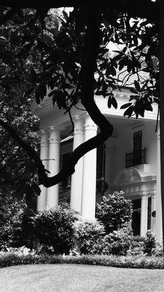 Love Graceland, it's amazing.(Elvis' Home)