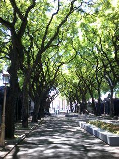 Chacarita Cementery