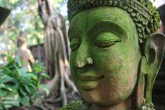 Ancient Terracotta Thai Buddha head