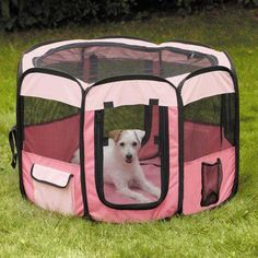 Guardian Gear Insect Shield Fabric Exercise Pen, Small, Pink * Read more reviews of the product by visiting the link on the image.