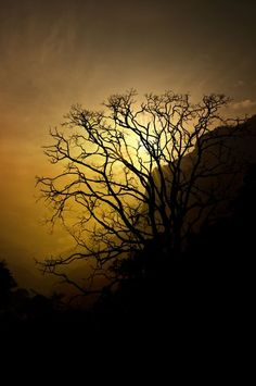 sunrise at Ooty Photo by Artist Praveen G Nair -- National Geographic Your Shot
