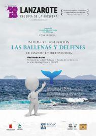 Las Ballenas y Delfines de Lanzarote yFuerteventura