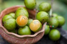 frutas tropicales de costa rica -