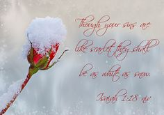 Isaiah 1:18 niv - winter garden