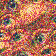 Be grateful if you don't know what it's like to suffer from an optical migraine. An obliteration of your vision as micro blood vessels burst. Not fun. Trippy Pictures, Random Pictures, Arte 8 Bits, Beste Gif, Trippy Gif, Acid Art, Photocollage, Arte Horror, Illusion Art