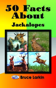 50 Facts About Jackalopes! #BruceLarkin www.wilbooks.com
