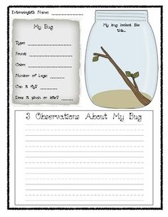Brownie Bugs badge Here's a set of pages on bug observation. Includes observation recording form, KWL on insects, and a Venn diagram comparing insects. Kindergarten Science, Elementary Science, Science Classroom, Teaching Science, Science For Kids, Science Activities, Life Science, Preschool, Mad Science