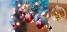 Weihnachtsmarkt Friedrichshafen 2014 Urbane Fotografie, Christmas Bulbs, Holiday Decor