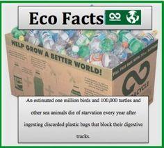 eco fact - litter