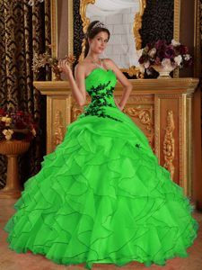 Appliques Sweetheart Organza Dress for Quinceanera with Ruffles in Green