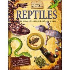 La grande famille des reptiles: tortue, serpent, lézard, crocodile, sphénodons, crapaud, grenouille, triton, salamandre, caméléon et les ancêtres des reptiles: les dinosaures.