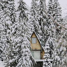 A day at a snowy log cabin / DIY Christmas ideas