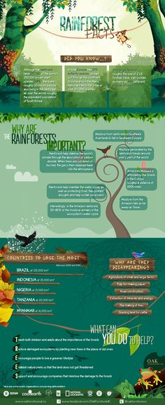Science infographic and charts Rainforest Facts from Oak Furniture UK: www. Infographic Description Rainforest Facts from Rainforest Classroom, Rainforest Project, Rainforest Theme, Rainforest Facts For Kids, Rainforest Ecosystem, Rainforest Activities, Animals In The Rainforest, Amazon Rainforest Facts, Geography