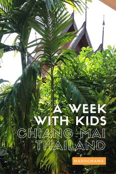 Visiting Chiang Mai, Thailand with Kids