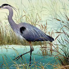 Great Blue Heron Painting - Wetland Beauty by James Williamson Original Artwork, Original Paintings, Canvas Art, Canvas Prints, Bird Silhouette, Thing 1, Blue Heron, Wildlife Art, Paintings For Sale
