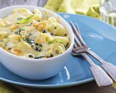 Gratin de pâtes aux blettes et béchamel légère : http://www.fourchette-et-bikini.fr/recettes/recettes-minceur/gratin-de-pates-aux-blettes-et-bechamel-legere.html