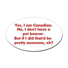 A pet beaver would be cool, my friends, family, and I are more of the dog owning type of people though.