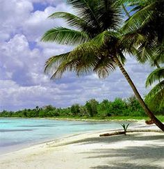 a place for you & a place for me right beside the sea .... Isla Saona, República Dominicana